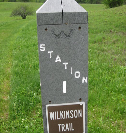 A trail marker post labeled Station I, Wilkinson Trail.