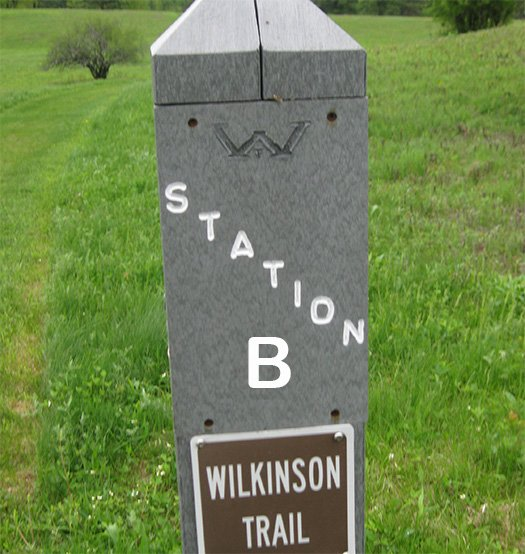 A trail marker post labeled Station B, Wilkinson Trail.
