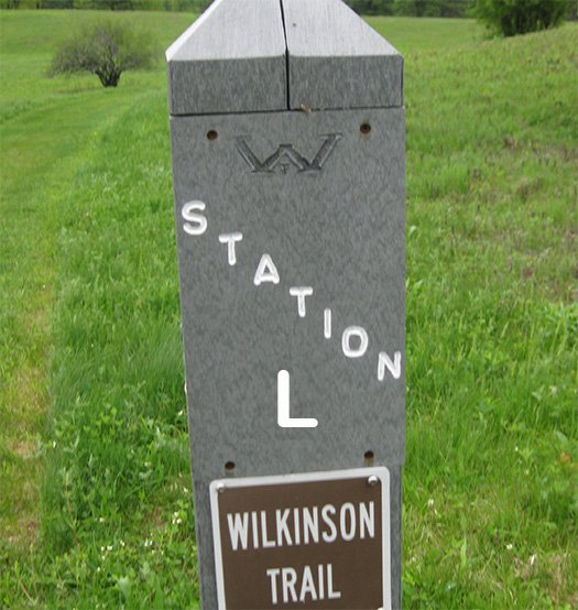 A trail marker post labeled Station L, Wilkinson Trail.