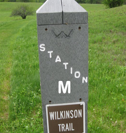 A trail marker post labeled Station M, Wilkinson Trail.