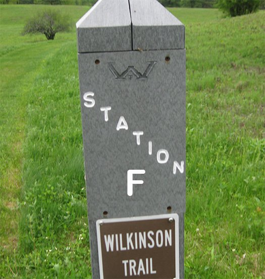 A trail marker post labeled Station F, Wilkinson Trail.